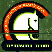 לוגו נחשונים