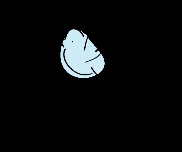 לוגו החופש ללמוד