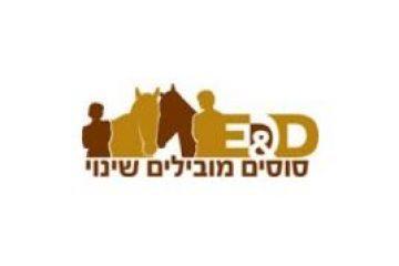 סוסים מובילים שינוי – סוסים ומנהיגים