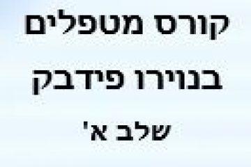 """נפתח קורס ייחודי למטפלים בשיטת """"נוירופידבק"""" . הקורס  בניהול מקצועי של """"BrainGames-Israel""""."""